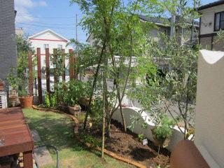 シンボルツリーのある庭