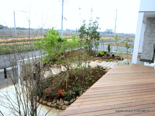 自然を感じる雑木の庭 つくばみらい市