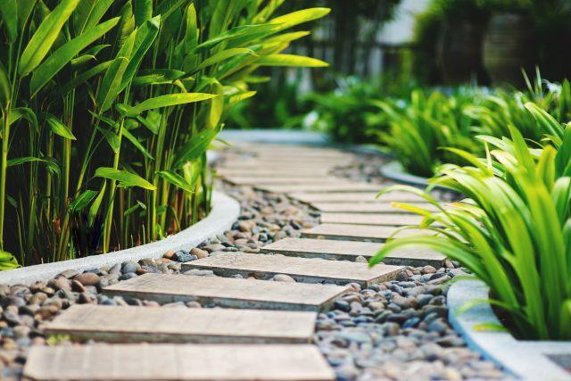 両側に植物が植えられた道